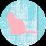 Vermiste of Gevonden kat