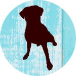 Vermiste of Gevonden hond
